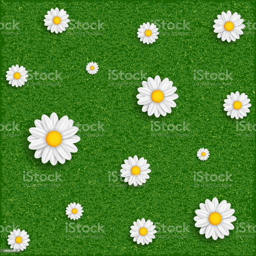 Background of grass and flowers. Vector image. vector art illustration