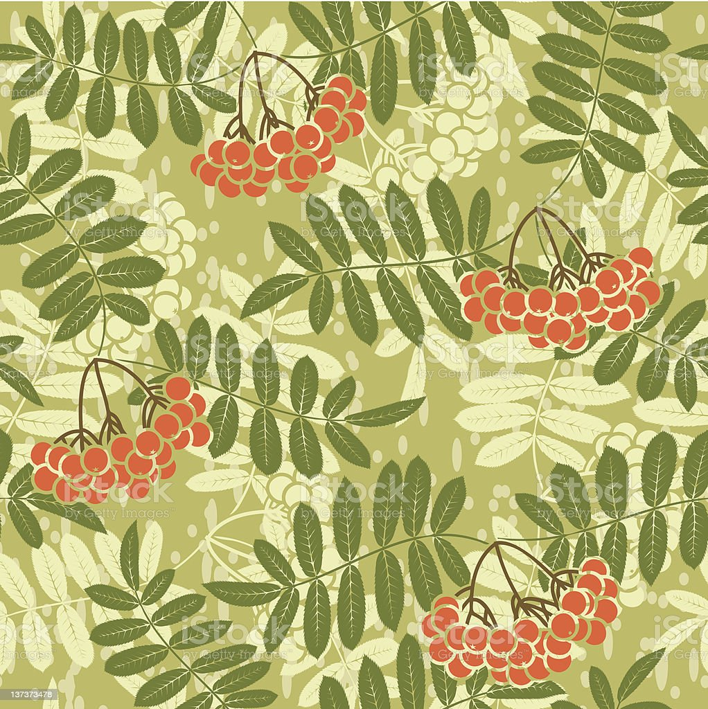 background of red rowan seamless pattern royalty-free stock vector art