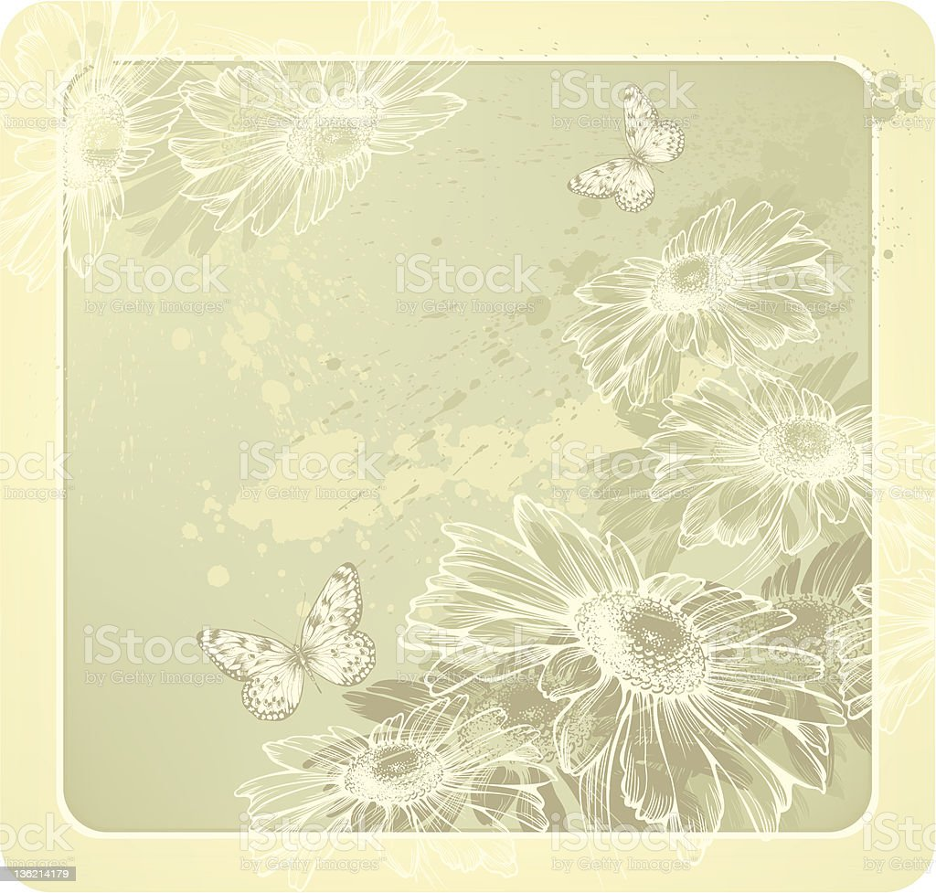 Background template with blooming daisies and butterflies hand-drawing. Vector illustration royalty-free stock vector art