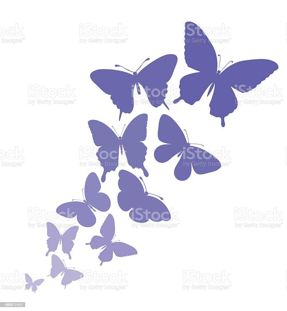 background with a border of butterflies flying. vector art illustration