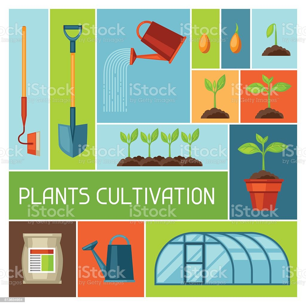 Background with agriculture objects. Instruments for cultivation, plants seedling process vector art illustration