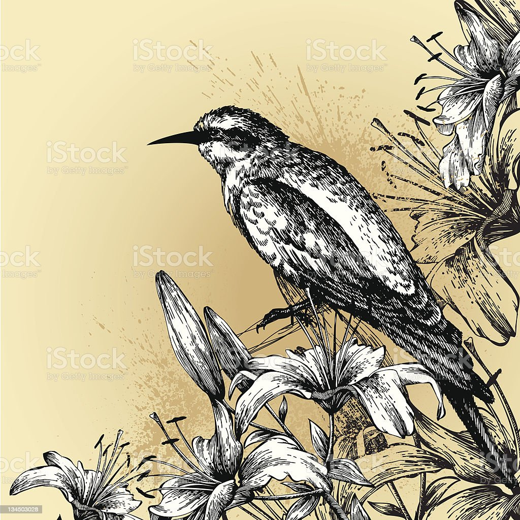 Background with blooming lilies and a sitting bird. Hand drawing. royalty-free stock vector art