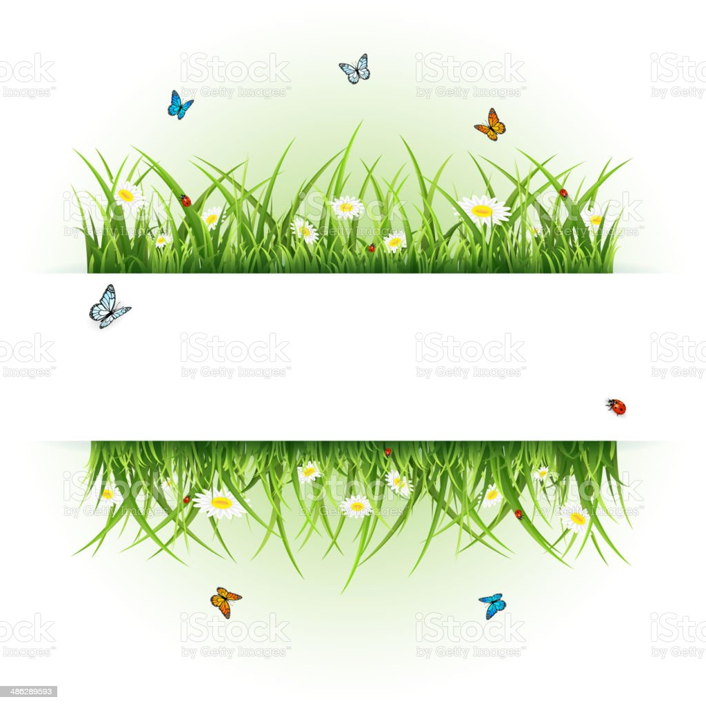 Background with butterflies and ladybugs royalty-free stock vector art