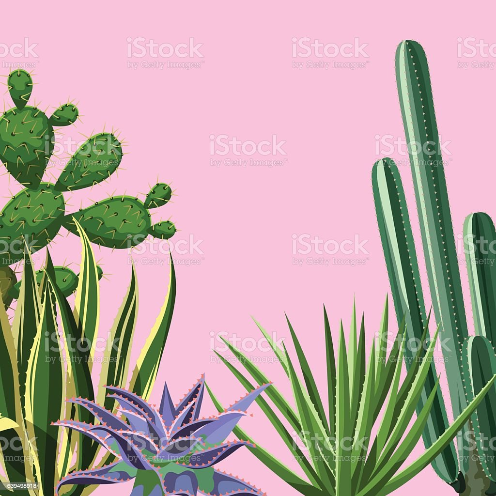 Background with cactuses and succulents set. Plants of desert vector art illustration