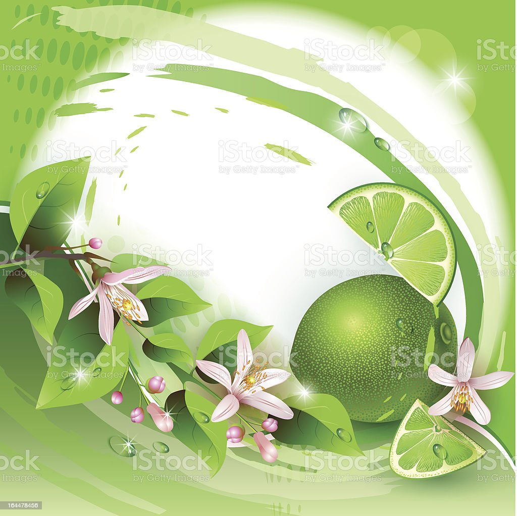Background with fresh lime royalty-free stock vector art