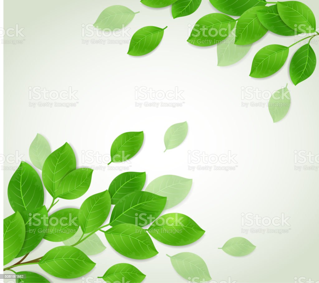 Background with green branch vector art illustration