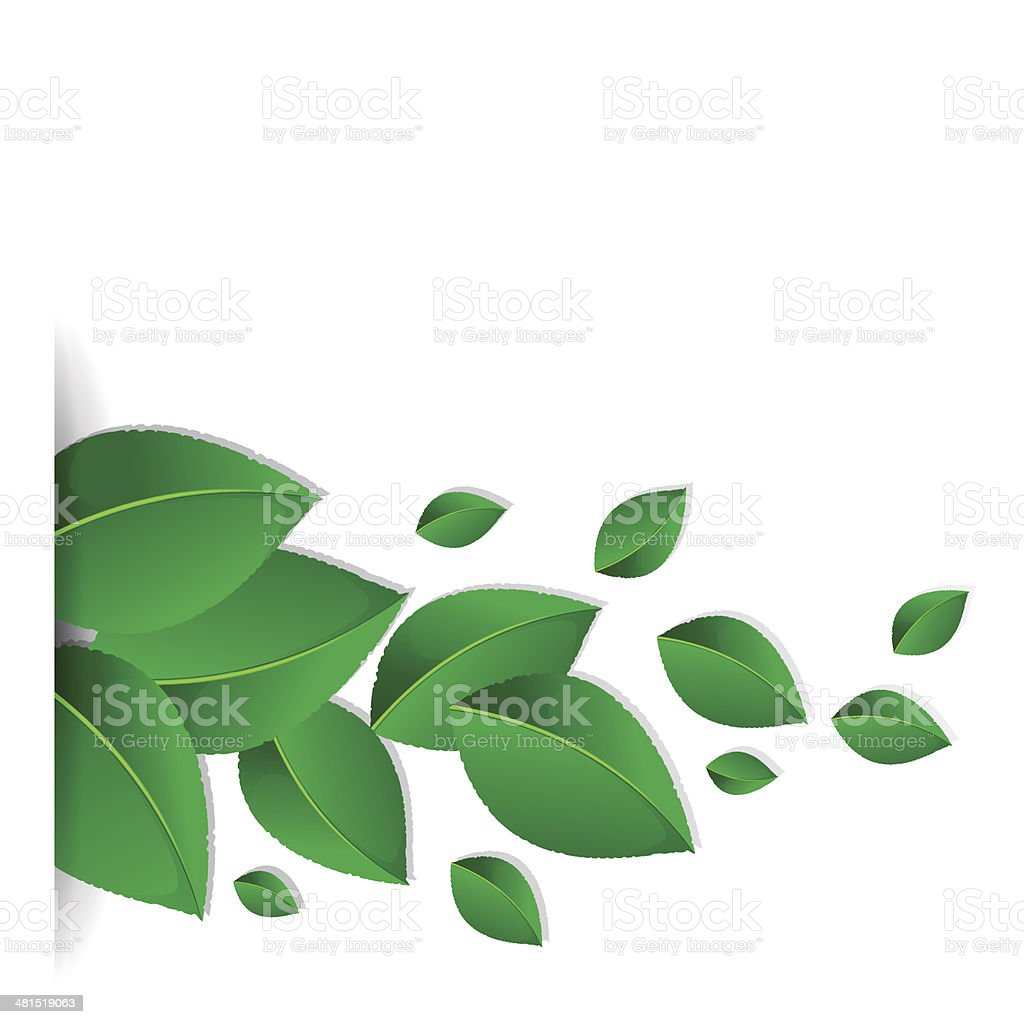 Background with green leaves vector art illustration