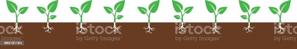 Background with growing sprouts vector art illustration