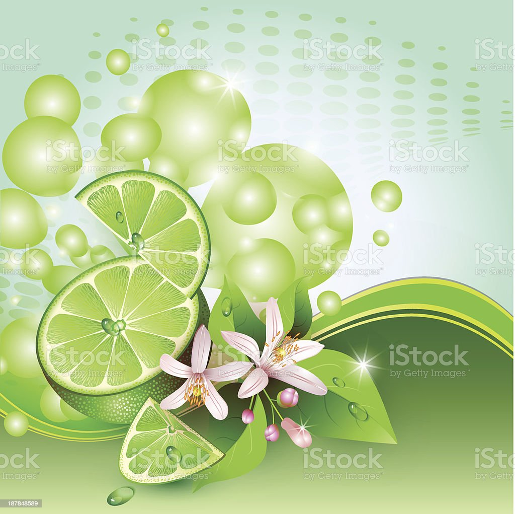 Background with juicy slices of lime fruit royalty-free stock vector art