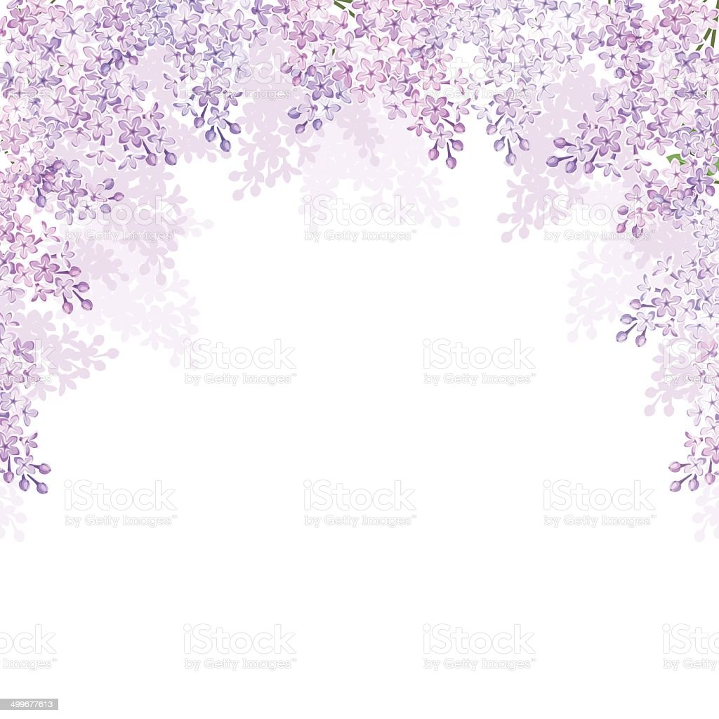 Background with lilac flowers. Vector illustration. vector art illustration