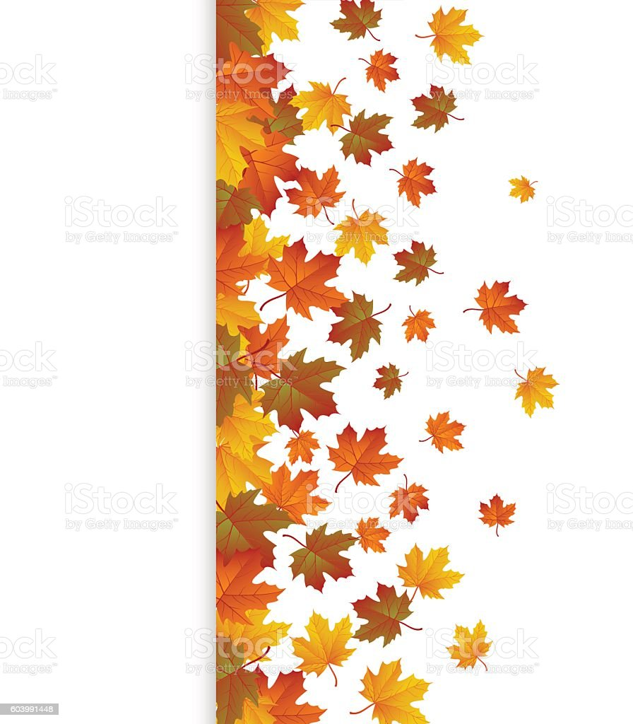 Background with maple autumn leaves. Vector vector art illustration