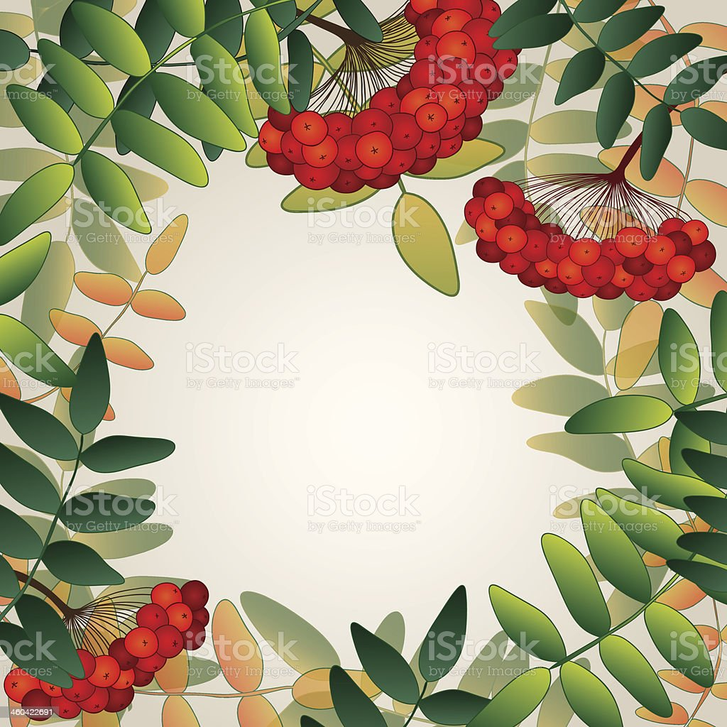 Background with rowan berries and leaves. vector art illustration