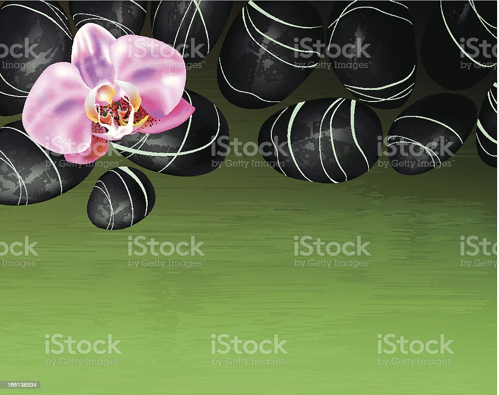 background with spa stones and orchids royalty-free stock vector art