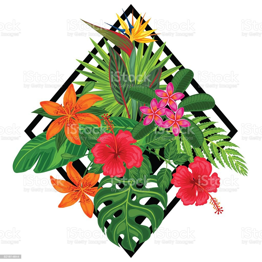 Background with stylized tropical plants, leaves and flowers. Image for vector art illustration