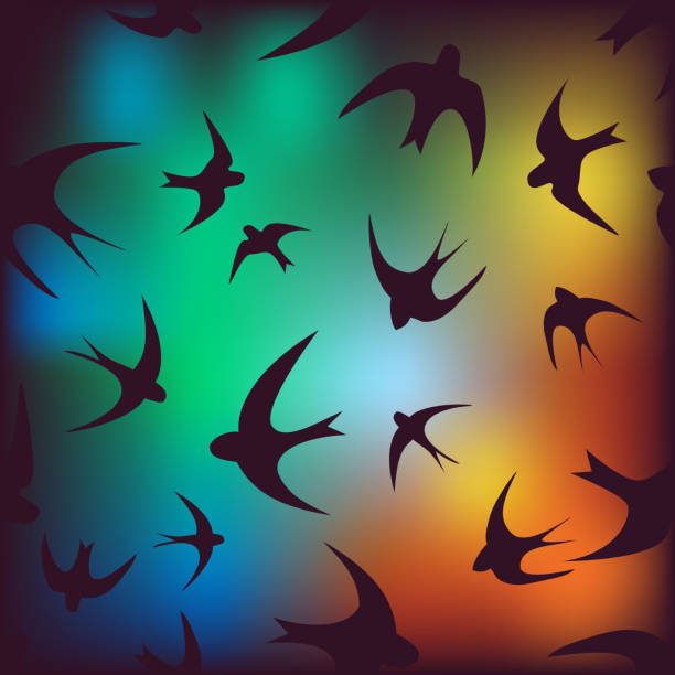 Animated Birds Flying Clip Art, Vector Images & Illustrations - iStock