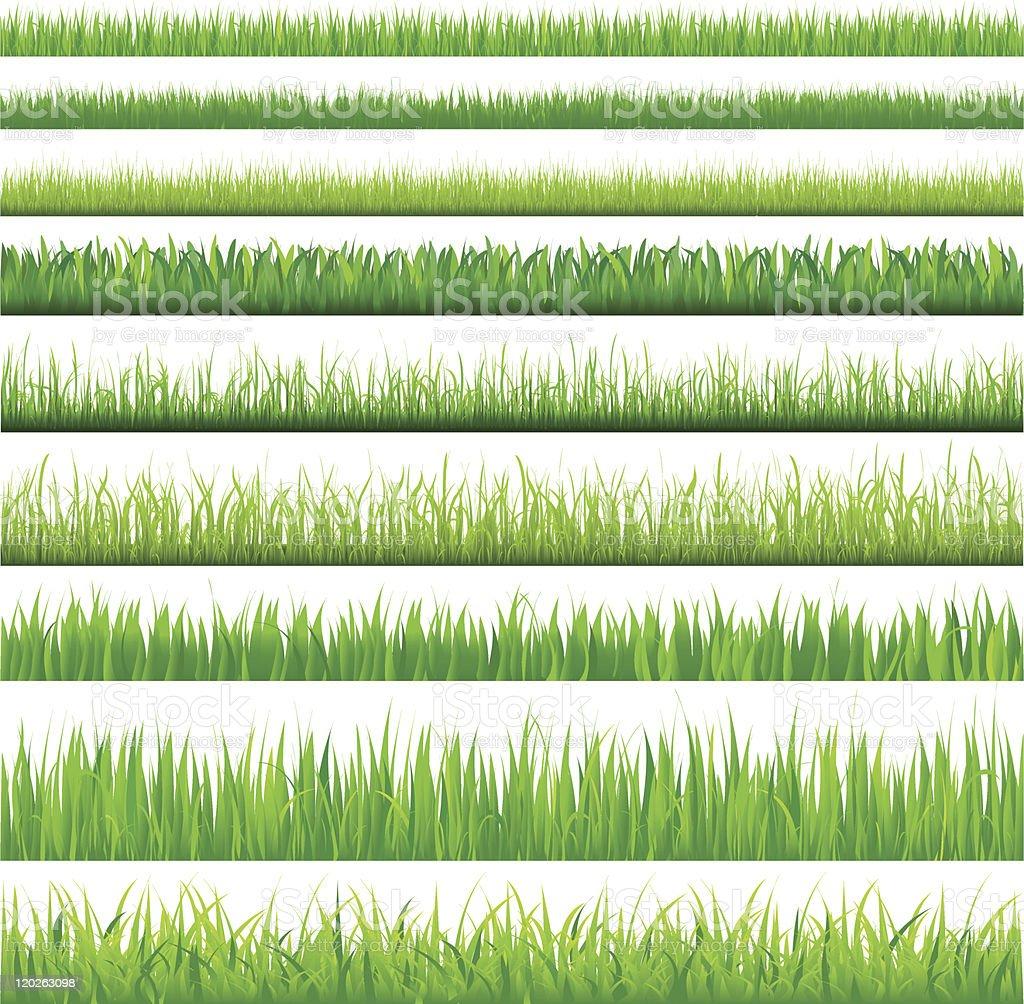 Backgrounds Of Green Grass vector art illustration