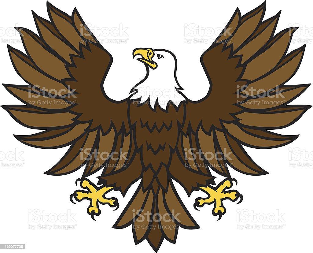 Bald Eagle - Displayed vector art illustration