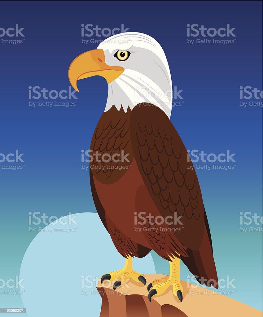 Bald Eagle royalty-free stock vector art