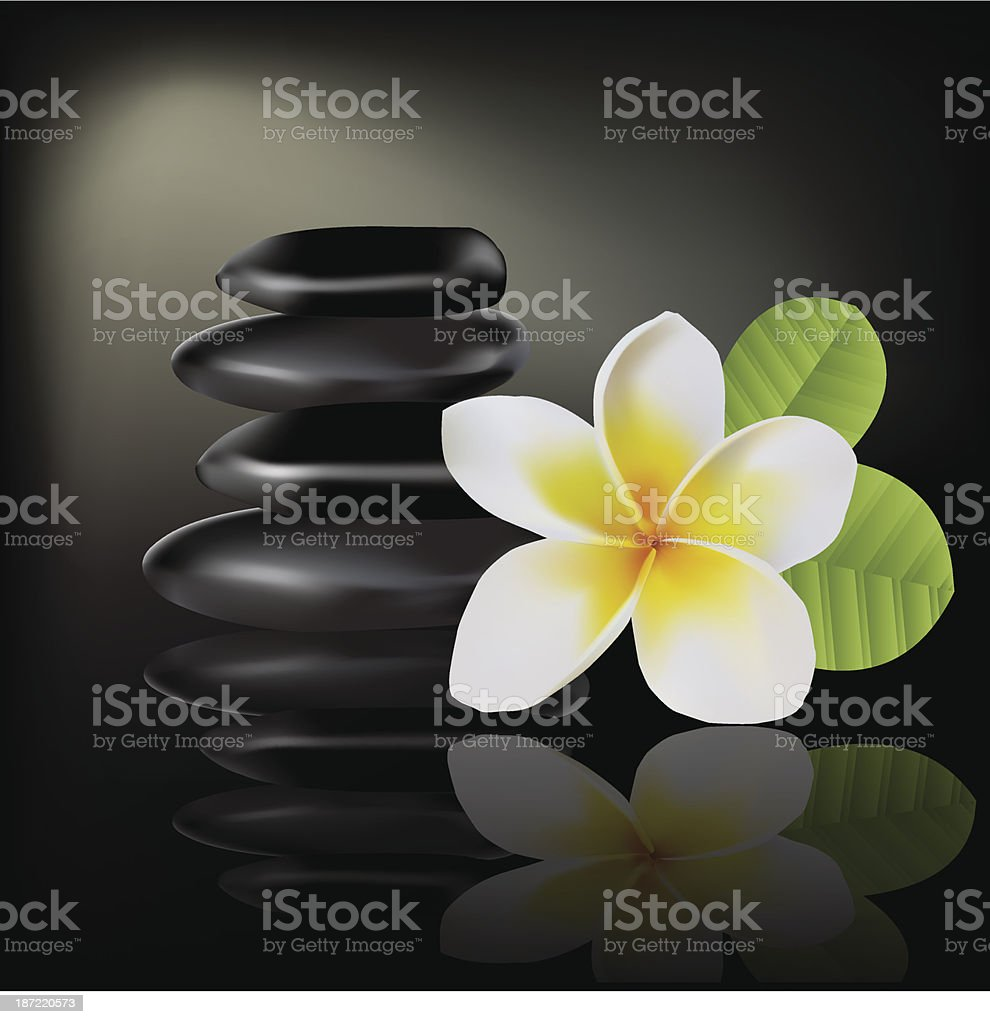 Balinese flower frangipani royalty-free stock vector art