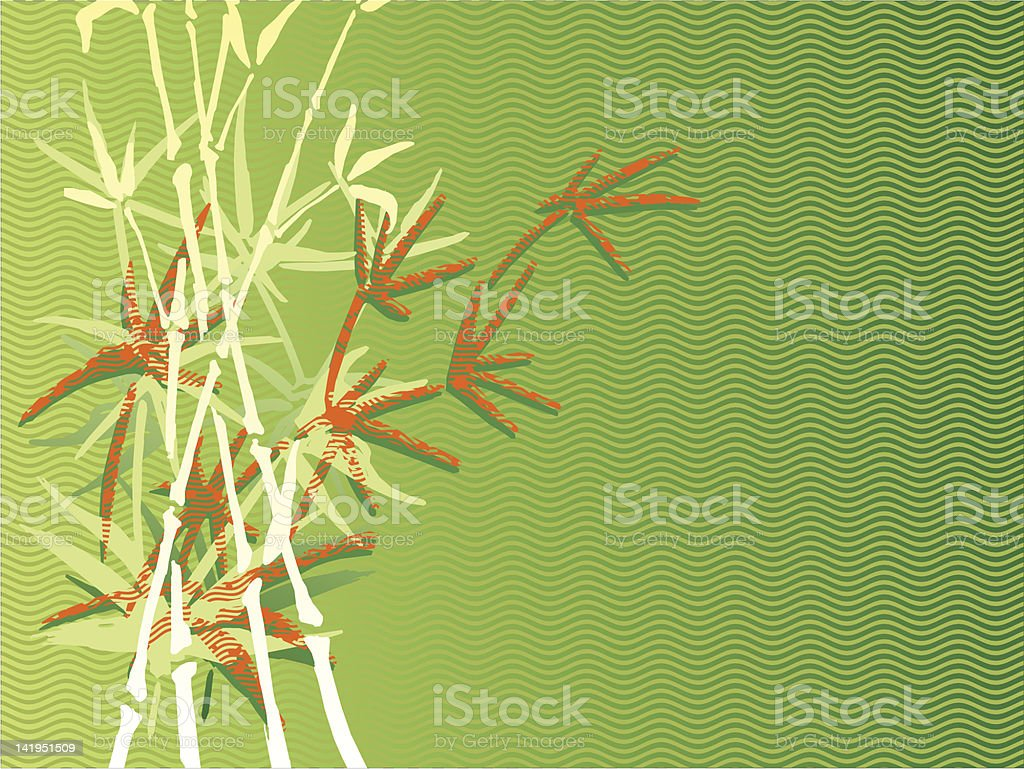 bambu background stock photo