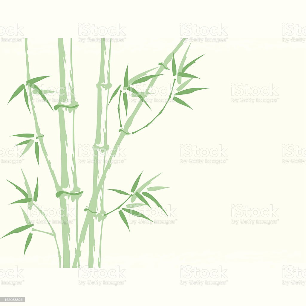 Bamboo background (Vector) royalty-free stock vector art