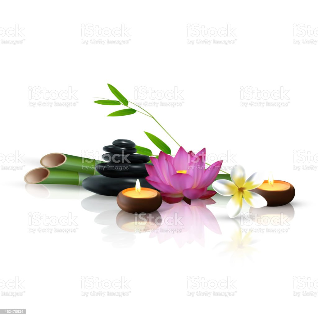 Bamboo, flowers, stone and wax isolated background. vector art illustration