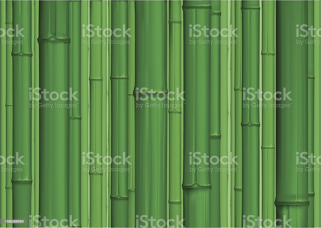 bamboo forest royalty-free stock vector art