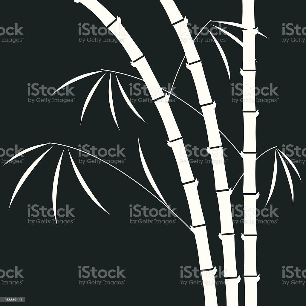 bamboo illustration vector art illustration