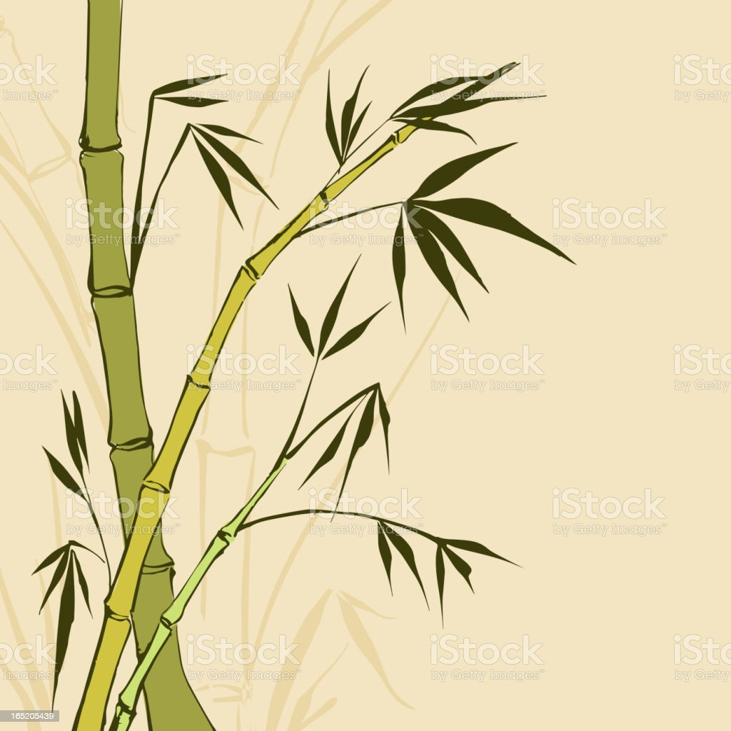 Bamboo Painting royalty-free stock vector art