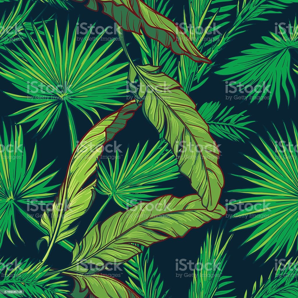 Banana and palm tree leaves on dark blue background vector art illustration
