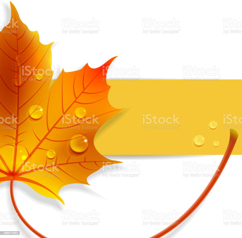 banner with a maple leaf vector art illustration