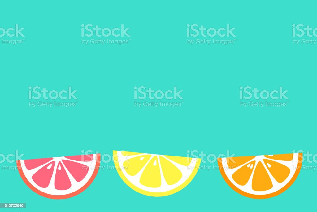 Banner with citrus fruits. Vector. vector art illustration