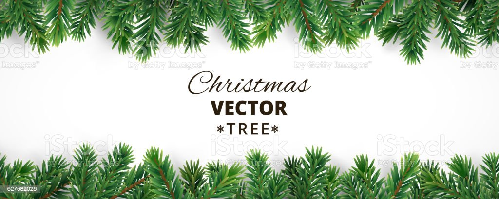Banner with vector christmas tree branches and space for text. vector art illustration