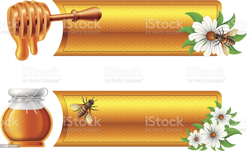 Banners with Honey vector art illustration