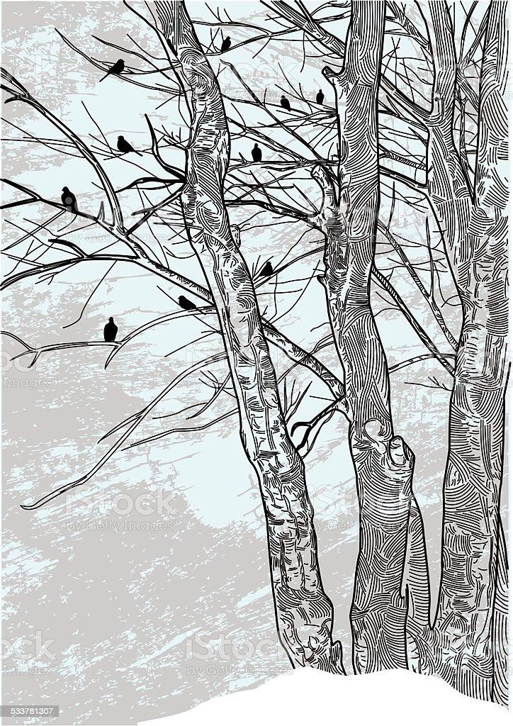 Barren Winter Trees vector art illustration