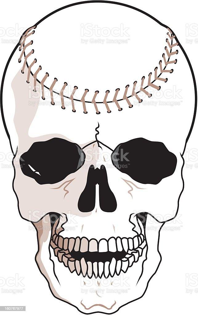 Baseball Skull royalty-free stock vector art