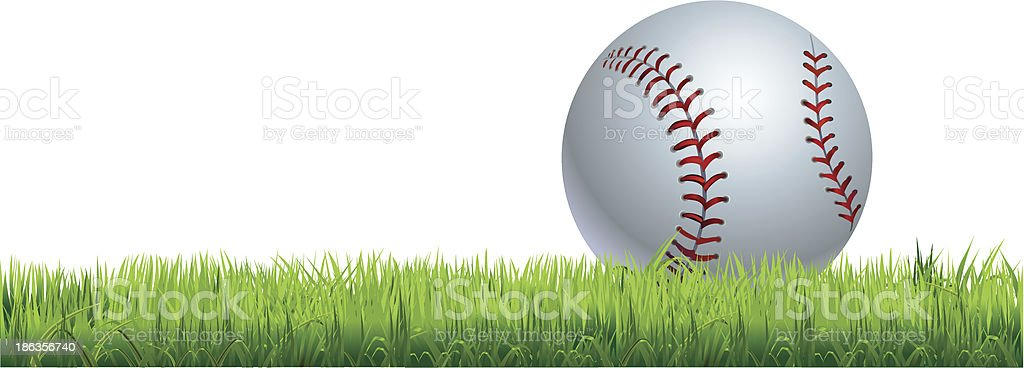 baseball vector art illustration