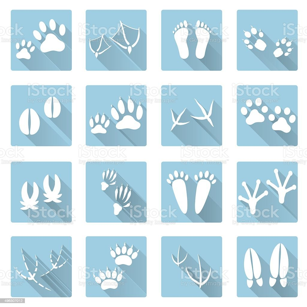 basic animal footprints flat shadow icon set eps10 vector art illustration