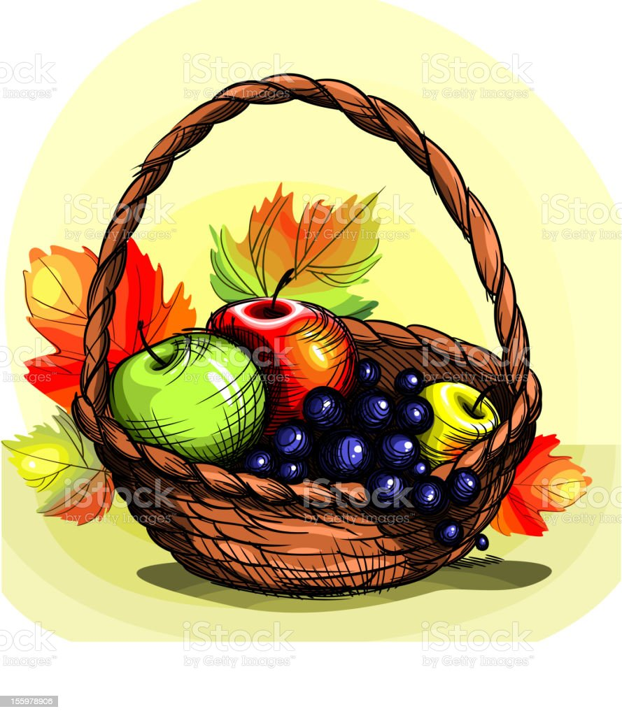 Basket with fruit. royalty-free stock vector art
