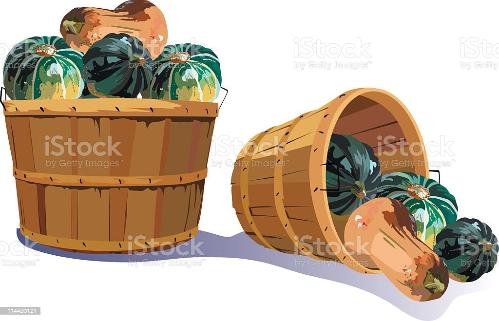 Baskets of Squash vector art illustration