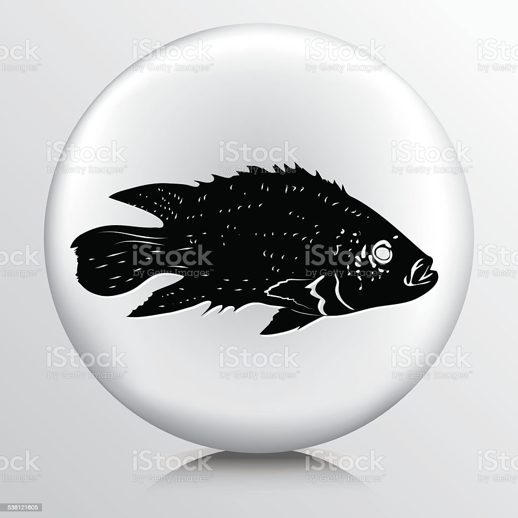Bass Fish Icon On Grey Base vector art illustration