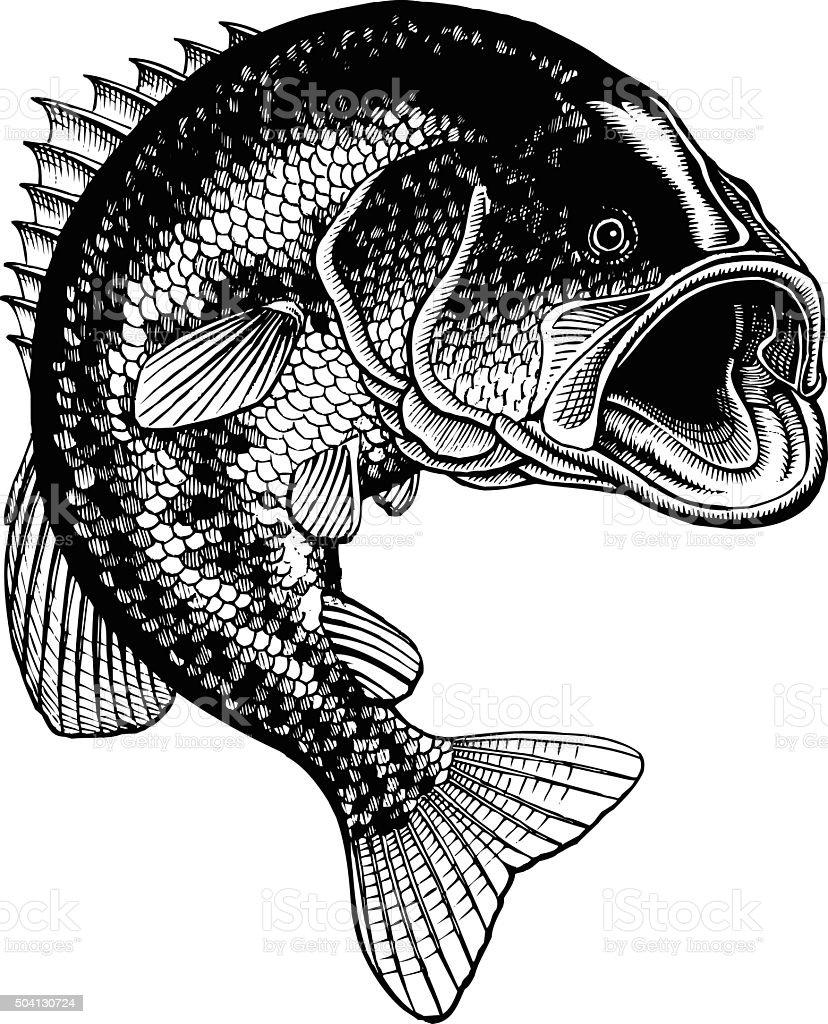 Bass Jumping Vintage vector art illustration