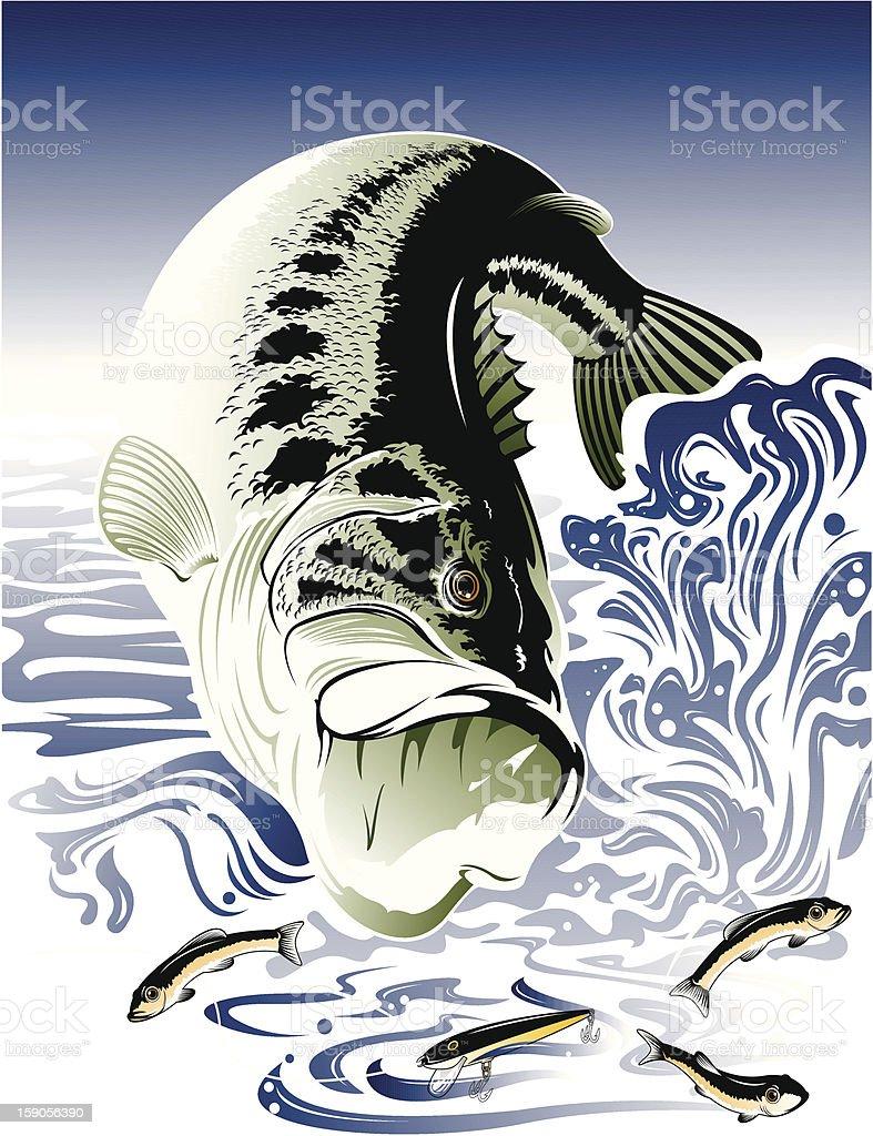 Bass_Fish vector art illustration