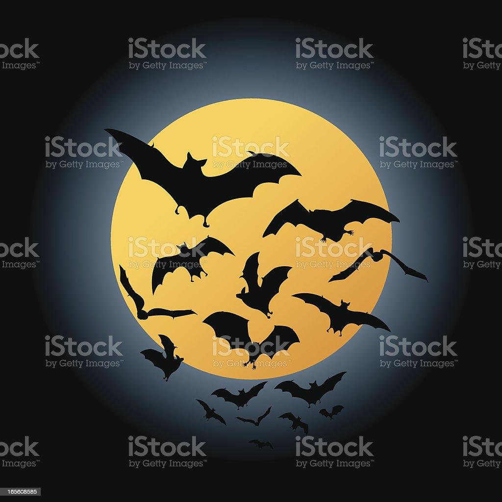 Bat Flight vector art illustration