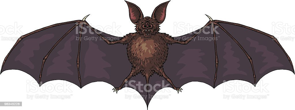 Bat royalty-free stock vector art