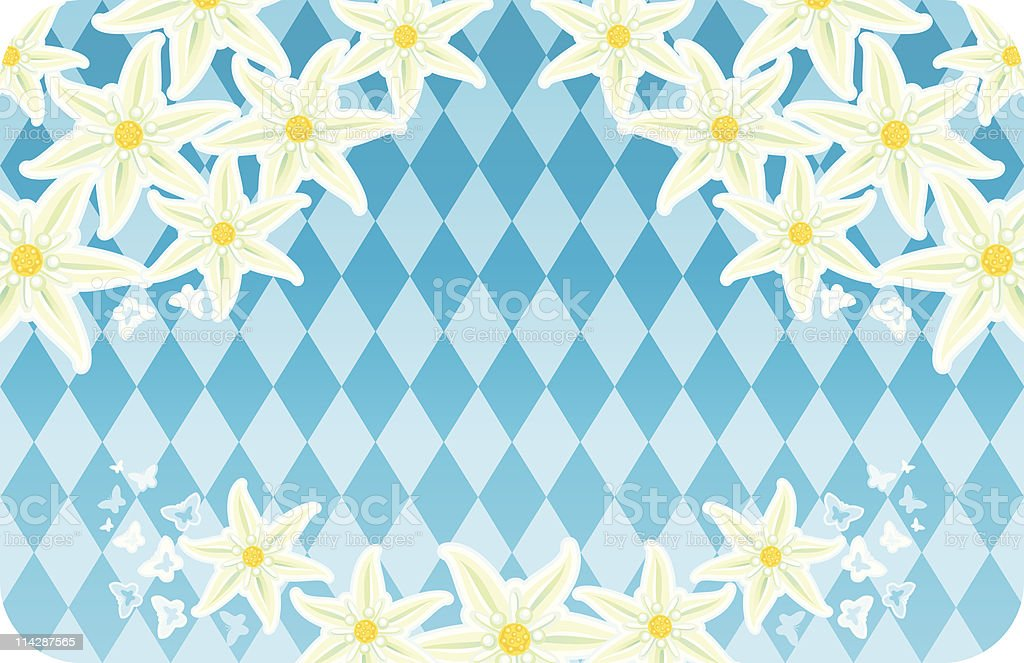 Bavarian Edelweisses royalty-free stock vector art