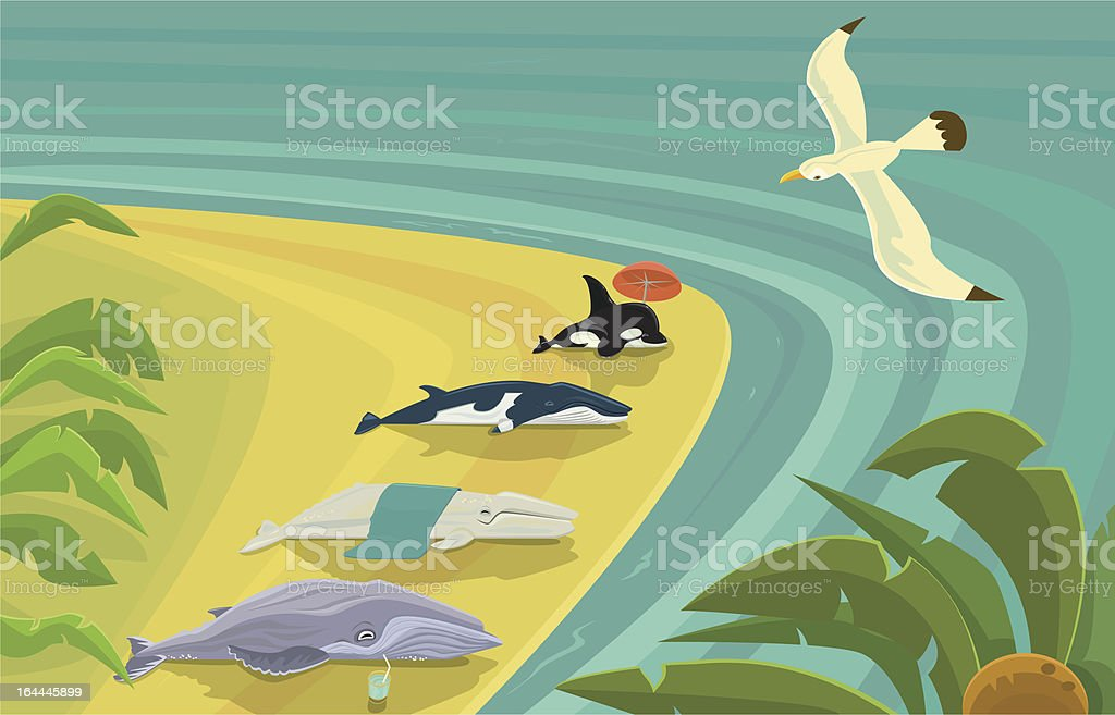 Beached Whales Sunning Themselves vector art illustration