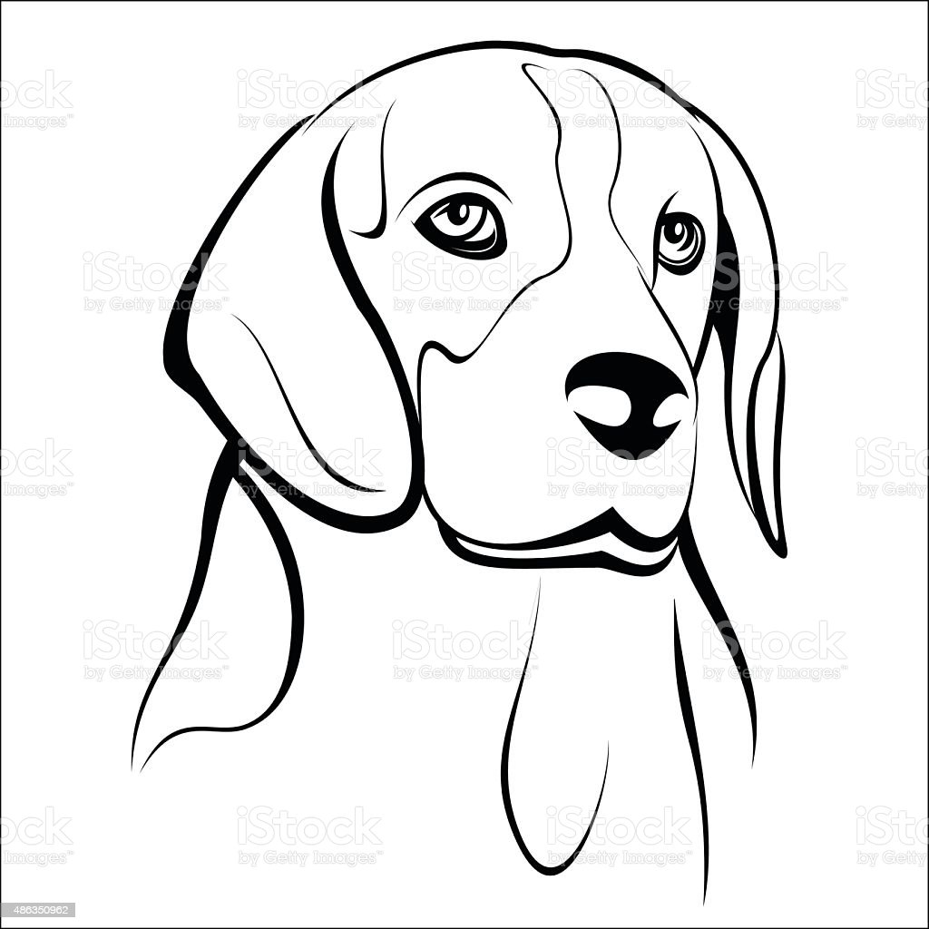 Beagle royalty-free stock vector art