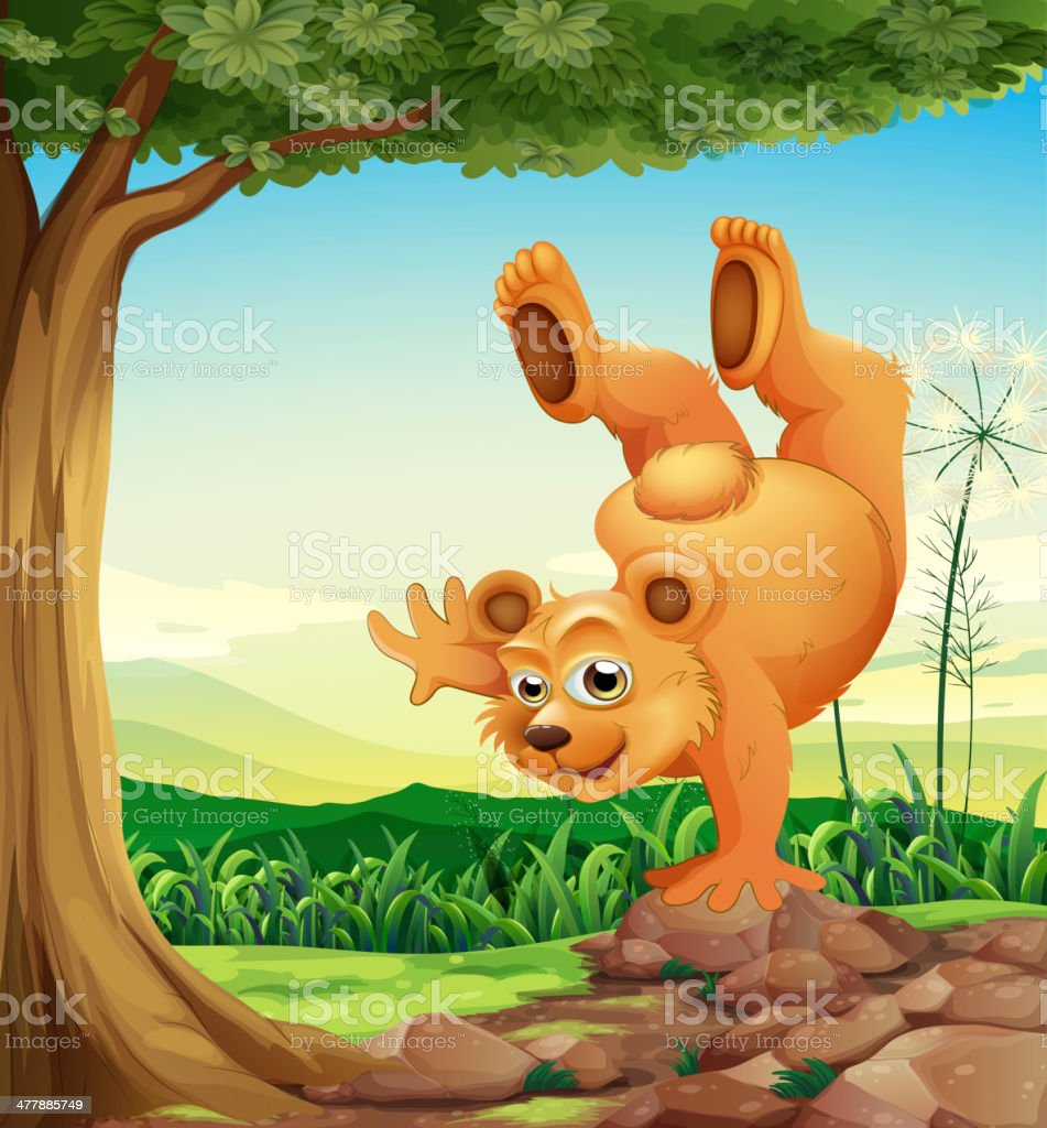 bear doing handstand near the tree vector art illustration