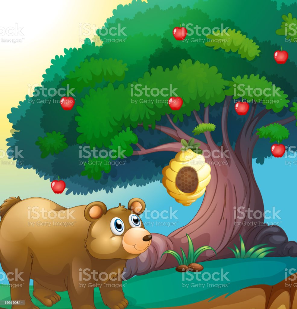 Bear looking at the beehive hanging in an apple tree royalty-free stock vector art